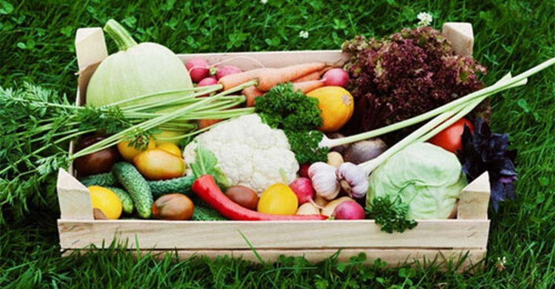 Vrai ou Faux : Quelques Faits sur l'Alimentation Bio